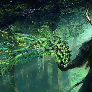 Druid's Dice