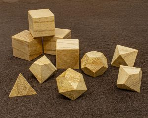Paulownia Polyhedral